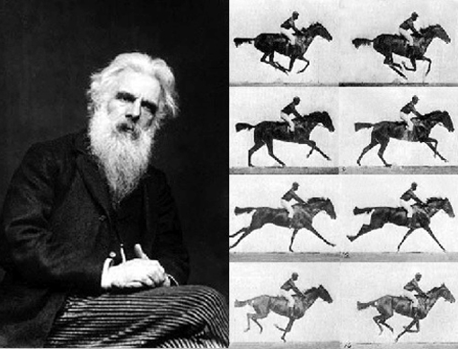 Eadweard-Muybridge-horse-post