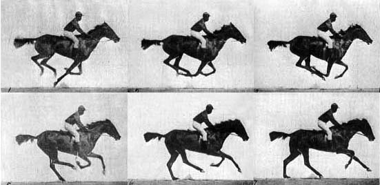 Muybridge_race_horse_gallop2
